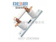 大量供應RN2-10/0.5A,RN2-6/0.5A熔斷器