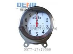 現貨供應JSY-8,JSY-10放電計數器(不銹鋼外殼)