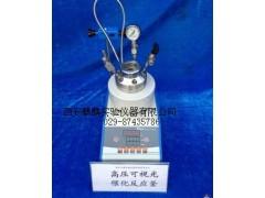 微型高壓反應釜-100ml