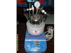 高压反应釜-150ml