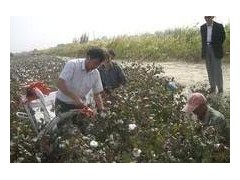 約翰迪爾采棉機 凱斯采棉機 貴航采棉機 自動棉花采摘機
