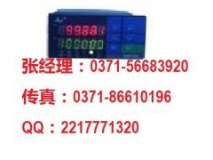 SWP-DS-L401 雙六位線速/轉速表,河南昌暉總代理