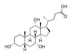 胆酸 81-25-4