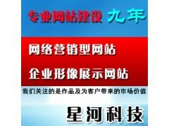 星河10年東莞*網站建設東莞網站改版升級東莞網站改版設計