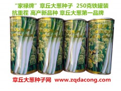 山東大蔥種子第一品牌高產新品種 家祿三號 抗重茬章丘大蔥種子