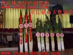 章丘大蔥種子生產基地 山東大蔥種第一品牌家祿三號章丘大蔥種子
