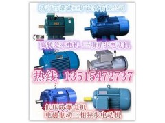 YEJ電機簡介/電磁制動三相異步電動機價格