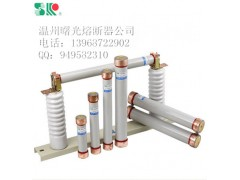 RN熔断器厂家批发,RN1-10KV/0.5A高压熔断器用途