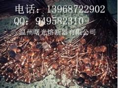 【温州曙光电器】高压熔断器、高压熔丝现货供应