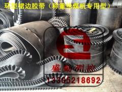裙邊環型膠帶(耐高溫阻燃型)給煤機專用膠帶(超低價)