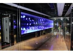 LED內雕玻璃