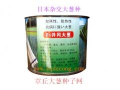 日本大蔥種子日本鐵桿日本鋼蔥高新品種井岡F1天光一本大蔥種子