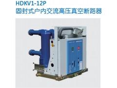 HDKV1-12P固封式高壓真空斷路器