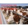 合作社轉型低價出售肉牛
