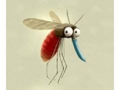 工地殺蚊子