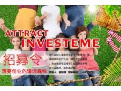 上海人造仿真草坪急招代理商_支持厂家代发_免费加盟