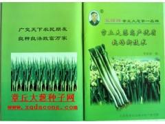 大葱种植新技术 缠线直播大葱种子种植机械化 章丘赭山大葱协会
