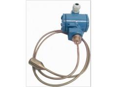 水處理用 CS26GADⅢEM1P1鎧裝液位變送器