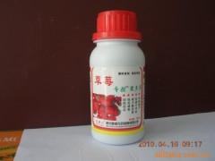 草莓控旺增产坐果多开花多无畸形果草莓不早衰控旺长好农药