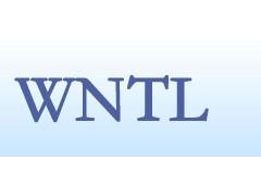 DNS服务 www.w-new.cn