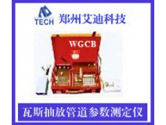 WGCB瓦?#38057;?#25918;管道参数测定仪