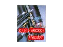 生產銷售鐵路軌道交通電纜,優質軌道信號交通電纜