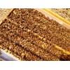 盐城西瓜授粉蜜蜂 蓝莓授粉蜜蜂
