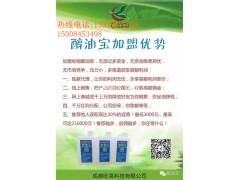 四川省環保油添加劑哪里的好 生物油催化劑價格