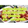 四川嘉州紫燕百味鸡总部加盟/正宗的嘉州百味鸡加盟