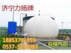 山东力扬双膜沼气储气柜安全耐用