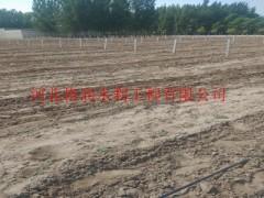 滴水带质美价廉,河南农田灌溉专选