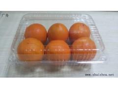 PET水果包装盒、PET透明蔬菜包装盒 广舟包装专业定制果蔬