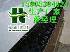 供應湖北蓄排水板/園林綠化蓄排水板/車庫防穿刺阻根板