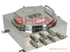 上海川诺直销防爆接线箱,IIC级,正宗304材质,价格优惠;