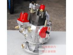 济宁优惠的康明斯PT燃油泵推荐_康明斯PT泵厂家