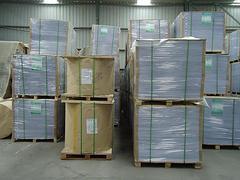 双胶纸厂家 山东划算的双胶纸上哪买