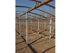 各種型號葡萄架,鑫達養殖設備,水泥立柱價格