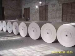 邢臺白板紙|河南專業的掛面白板紙上哪買