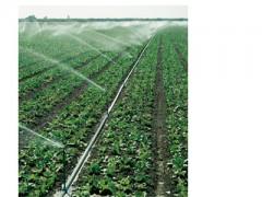 重庆农场微喷头_福建专业的雾化喷头供应商