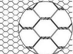 想买优质镀锌六角网,东方五金网类制品公司是您理想的选择:优质镀锌六角网