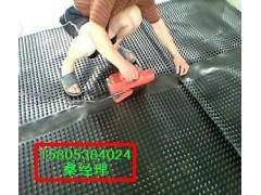 供应地下车库塑料排水板//屋顶耐根穿刺排水板
