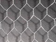 六角网哪家好 东方五金网类制品公司质量好的镀锌六角网[特供]