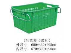 廠家直供各種規格蔬菜運輸箱 水果采摘箱 食品運輸箱 透氣好