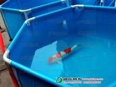 防水帆布厂养殖池加工定做_可移动帆布鱼池水池