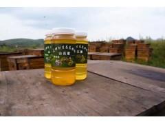 贵阳口碑好的山花蜜供应商 贵州蜂蜜价格
