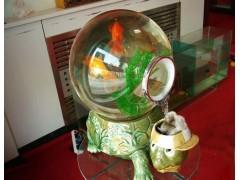 厂家批发山东亚克力鱼缸:出售山东上档次山东亚克力生态鱼缸
