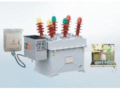 溫州好的ZW8M-12系列戶外高壓永磁真空斷路器|中國ZW8永磁真空斷路器