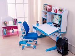 品牌健康学习桌椅&山东儿童学习桌椅&首席童伴家具