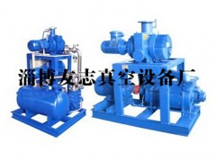 淄博真空泵厂【友志】提供高质量JZJ2B罗茨水环机组批发|供应