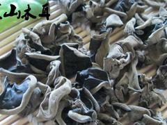 优质的黑山木耳:供应大同热卖黑山木耳